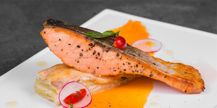 Pan Fried Salmon from Vibes Cafe (Mediacorp Campus) in Buona Vista, Singapore