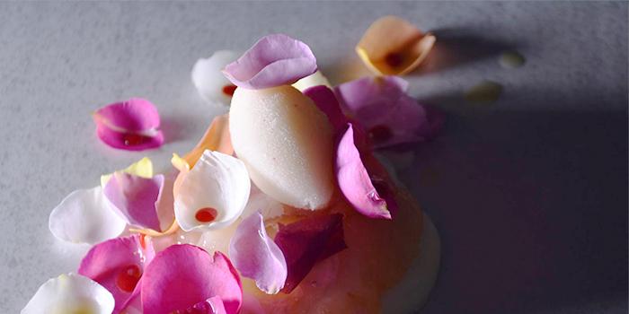 Kanagawa Rose from béni Singapore at Mandarin Gallery in Orchard, Singapore