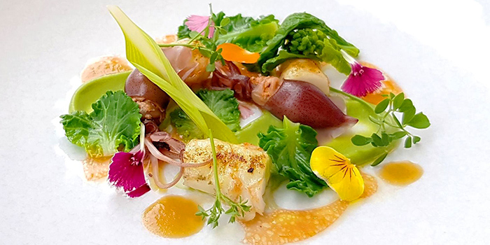 Langoustine and Squid from béni Singapore at Mandarin Gallery in Orchard, Singapore