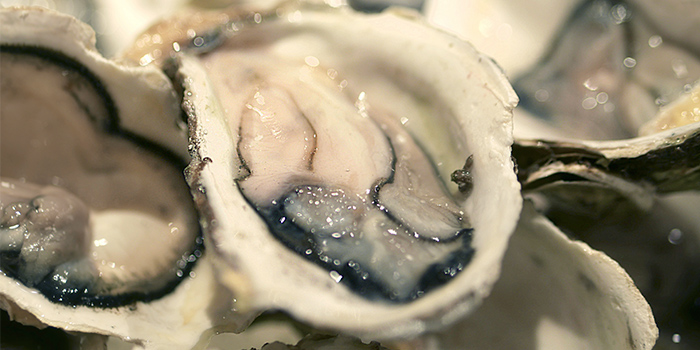 Oysters from Thai Tanic Live Seafood Hotpot in Outram, Singapore