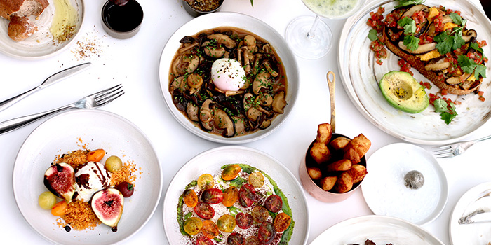 Chope | Restaurant Reservations and Dining Deals