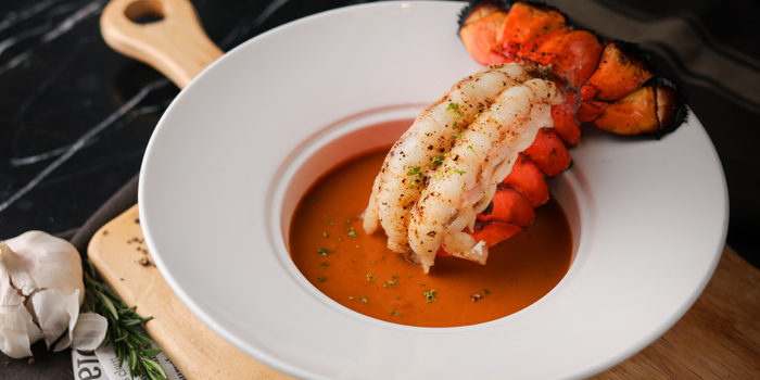 Lobster Bisque from Maillard Butcher at 18/9-10 Sathorn Soi 11, Sathorn Rd. Yanawa, Sathorn Bangkok Thailand