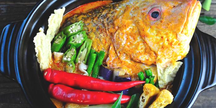Curry Fish Head from Jiak Modern Tzechar (Hillview) in Bukit Timah, Singapore