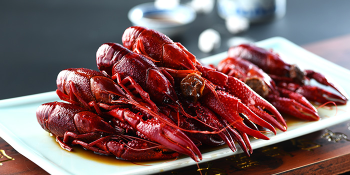 Drunken Virgin Red Crayfish from Nanjing Impressions at Plaza Singapura in Dhoby Ghaut, Singapore