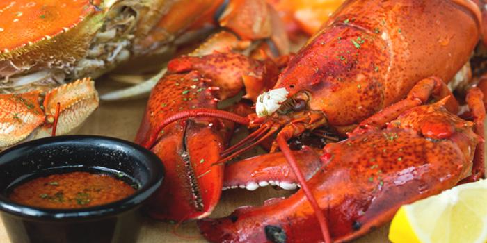 Lobster from The Boiler (Esplanade) in Esplanade, Singapore