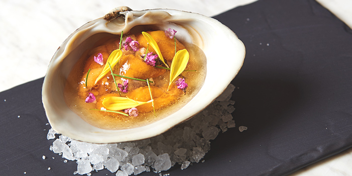 Clam from béni Singapore at Mandarin Gallery in Orchard, Singapore