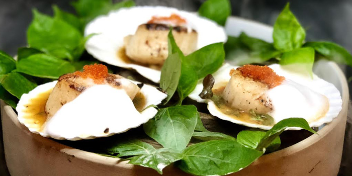 Scallop from 23 Restaurant and Club in Caherng Talay, Phuket, Thailand.