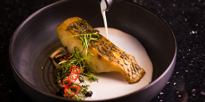 Tom Kha Sea Bass from Day