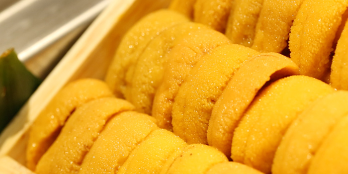 Fresh Uni from Sushi Cyu at CENTRAL WORLD 3rd Floor, Atrium Zone 999/9 Rama 1 Road Patumwan, Bangkok
