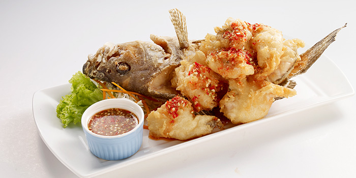 Fried Fish from Bangkok Jam (Bugis+) in Bugis, Singapore