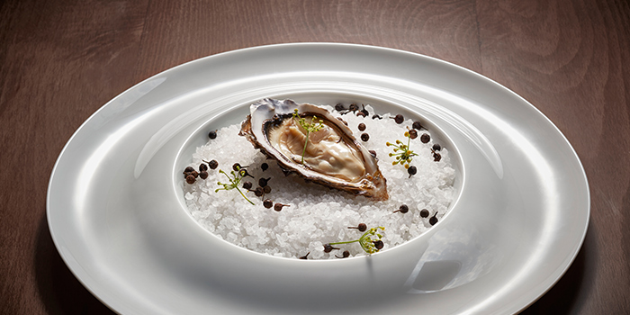 Oyster from Fish Pool at The NCO Club in City Hall, Singapore
