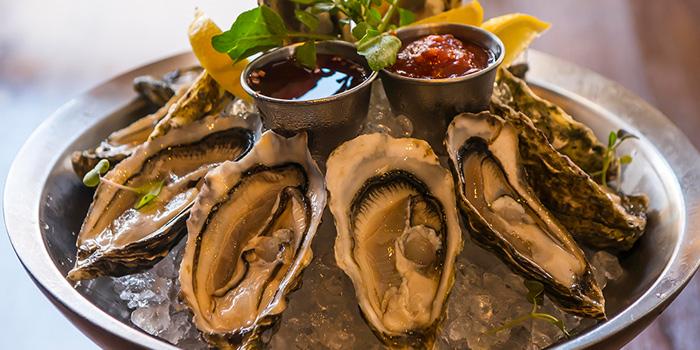 Fresh Oyster, McSorley