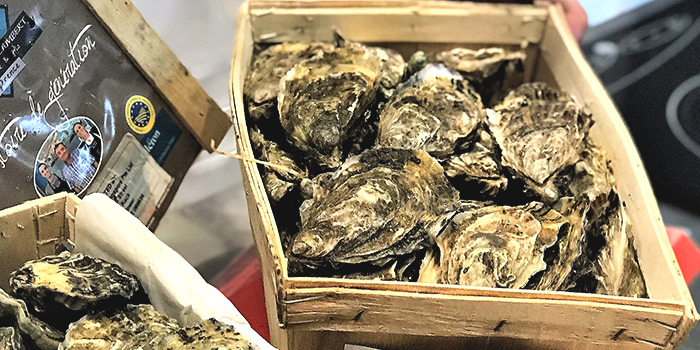 Oysters from So France at Duo Galleria in Bugis, Singapore