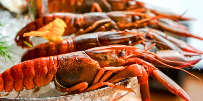 Hero Shot Crayfish from Riedel Wine Bar & Cellar at Gaysorn Village, Bangkok