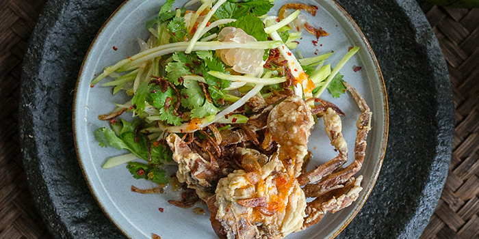 Pomelo, Green Mango, Coriander Leaf, Chili Lime Salad with Soft Shell Crab from Coriander Leaf at CHIJMES in City Hall, Singapore