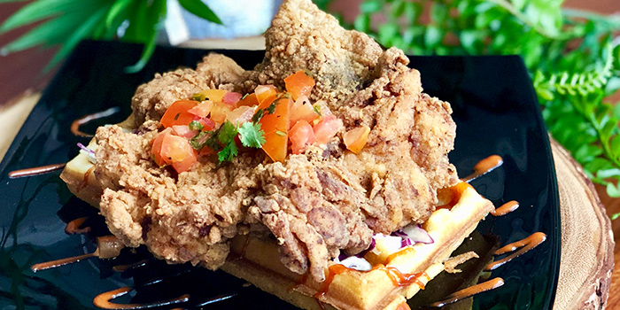 Crispy Buttermilk Chicken with Waffles from Hej Kitchen & Bar at Peranakan Place in Orchard, Singapore