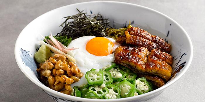 Healthy Unajyu from Uya 四代目菊川 Japanese Unagi Restaurant in Orchard Road, Singapore