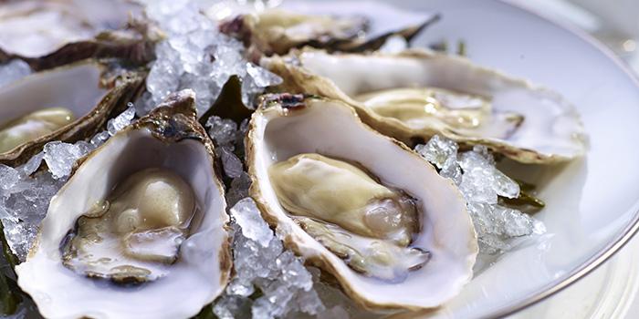 Seasonal Oysters, Hugo