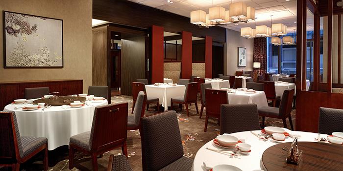 Dining Area, The Chinese Restaurant, Tsim Sha Tsui, Hong Kong