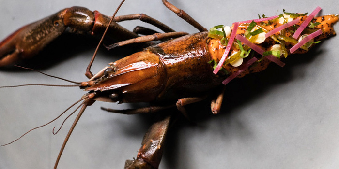 Lobster from Canvas at 113/9-10 Sukhumvit Soi 55 (near Thonglor Soi 5) Khlong Tan Nuea, Wattana Bangkok