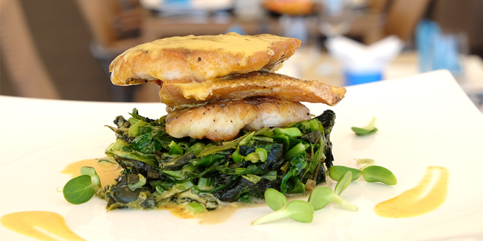 Style-Sea-Bass from Climax Poolside Bar & Grill in Patong, Phuket, Thailand.
