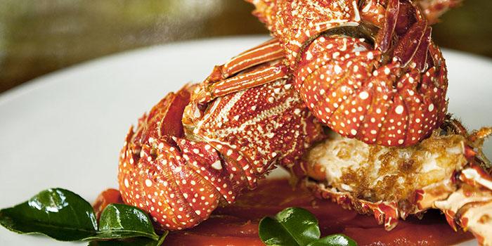 Grilled Lombok Lobster from Kemiri Restaurant at Ubud, Bali