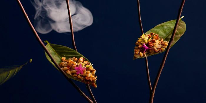 Last Leaf from Wang Hinghoi at 149 Rimtangrodfai-sai Paed-Riu Rd Bangkapi, Huaykwang Bangkok