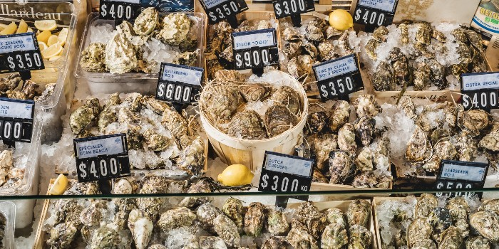 Live Oysters from Greenwood Fish Market @ Valley Point in River Valley, Singapore