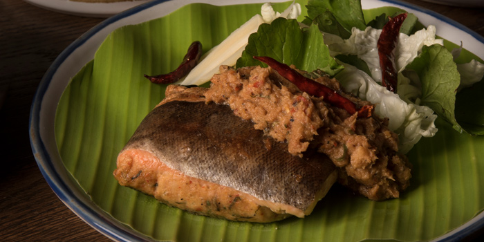 Mok Larb Trount from Funky Lam Kitchen at TASTE Thonglor Soi 11 Sukhumvit 55, Wattana Bangkok