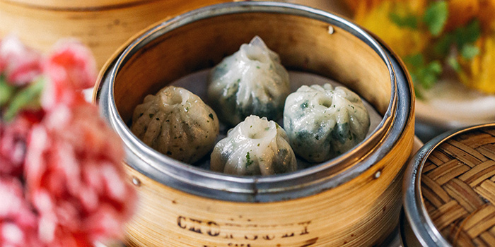 Chicken & Chive Dumplings from Chopsuey Cafe Dempsey in Dempsey, Singapore