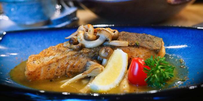 Pan Sear Fresh Salmon from Jun Omakase in Raffles Place, Singapore