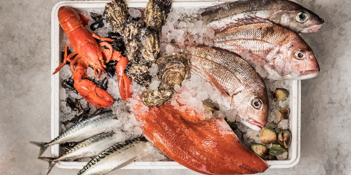 Wholesale Retail Marketfrom Greenwood Fish Market @ Valley Point in River Valley, Singapore