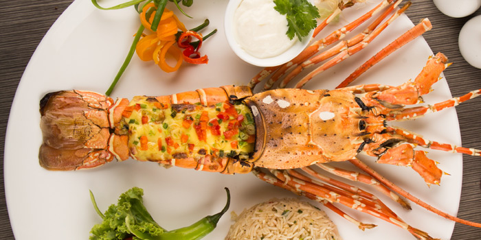 Lobster from Arabesque Restaurant at 68/1 Sukhumvit Soi 2 Sukhumvit Rd, Klongtoey Bangkok