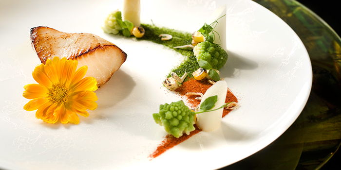 Miso Cod Fish and Dutch Capsicum & Romanesco, Van Gogh Senses, Tsim Sha Tsui, Hong Kong