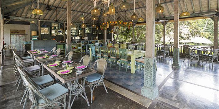 Interior from Herb Library Bali, Ubud, Bali