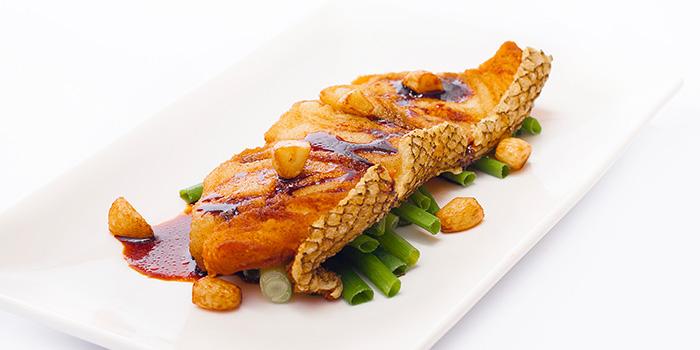 Cod Fish from Dian Xiao Er (NEX) in Serangoon, Singapore