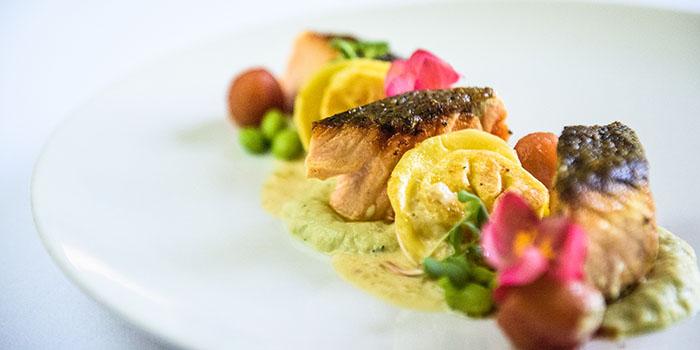 Grilled Salmon from Bridges Bali, Ubud, Bali