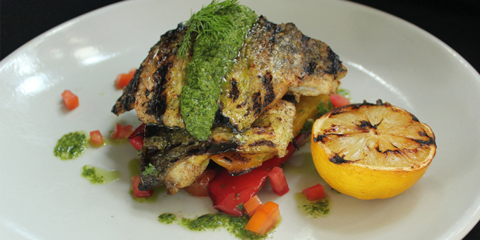 Grilled white snapper fillet from SALA Restaurant & Bar in Maikhao, Phuket, Thailand