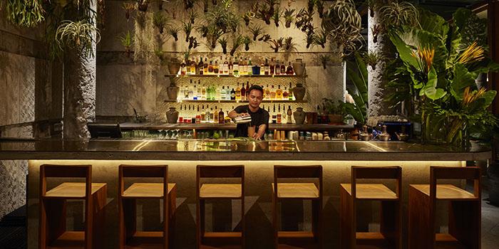 Bar from Kaum Bali, Seminyak, Bali