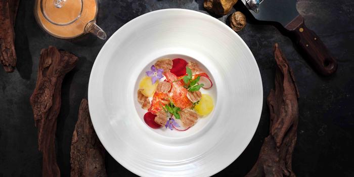 Lobster with Mediterranean Radish, Nicholini