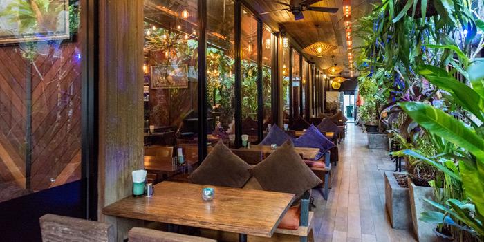 Outside Area of Mallard at 16 Soi Sukhumvit 49 Khlong Tan Nuea, Watthana Bangkok