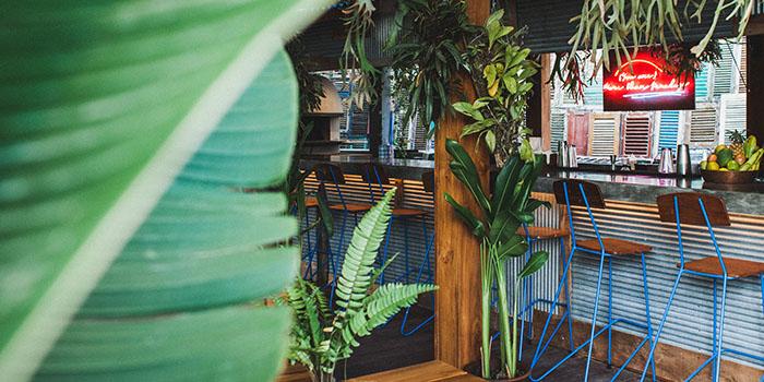 Interior from Pizza Garden, Seminyak, Bali