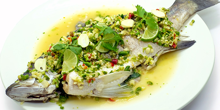 Steam Seabass from Baan Ying Singapore at Royal Square @ Novena in Novena, Singapore