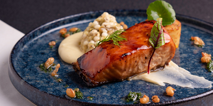 Miso Red Dates Roasted Salmon from Halcyon & Crane at Paragon Shopping Centre in Orchard, Singapore
