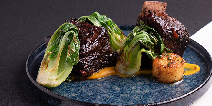 Red Braised Australia Angus Short Ribs from Halcyon & Crane at Paragon Shopping Centre in Orchard, Singapore