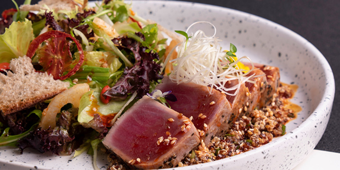 Saliva Smoked Tuna Tataki Salad from Halcyon & Crane at Paragon Shopping Centre in Orchard, Singapore