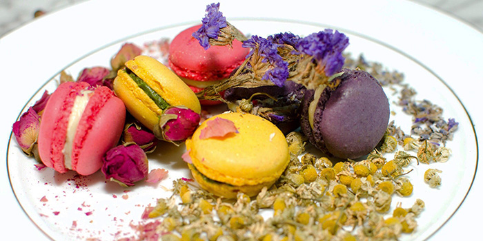 Macarons from Wild Blooms in Serangoon, Singapore