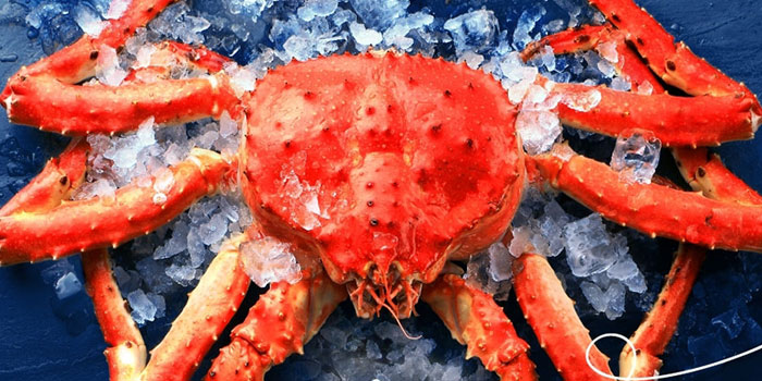 Fresh Catch Crab, Yamm, Tsim Sha Tsui, Hong Kong