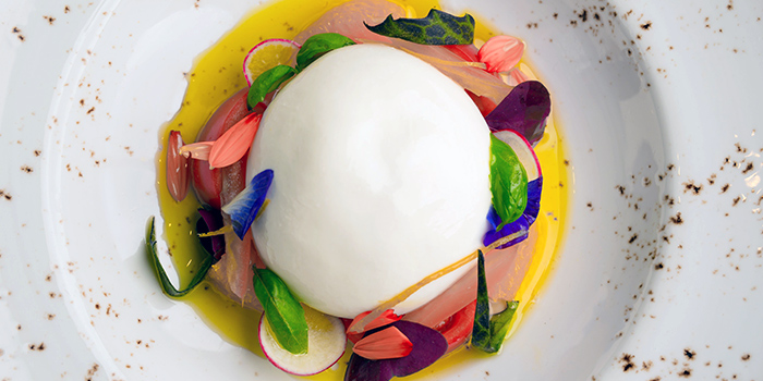 Burrata Cheese from Caffé B at Club Street, Singapore
