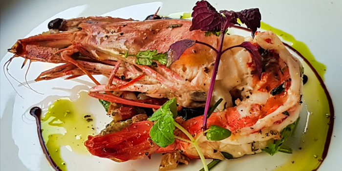 Jumbo Prawn from Cosmos Restaurant & Wine Bar from Forum The Shopping Mall in Orchard, Singapore